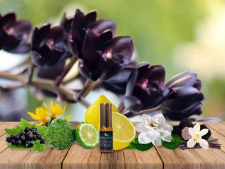 Черная орхидея
