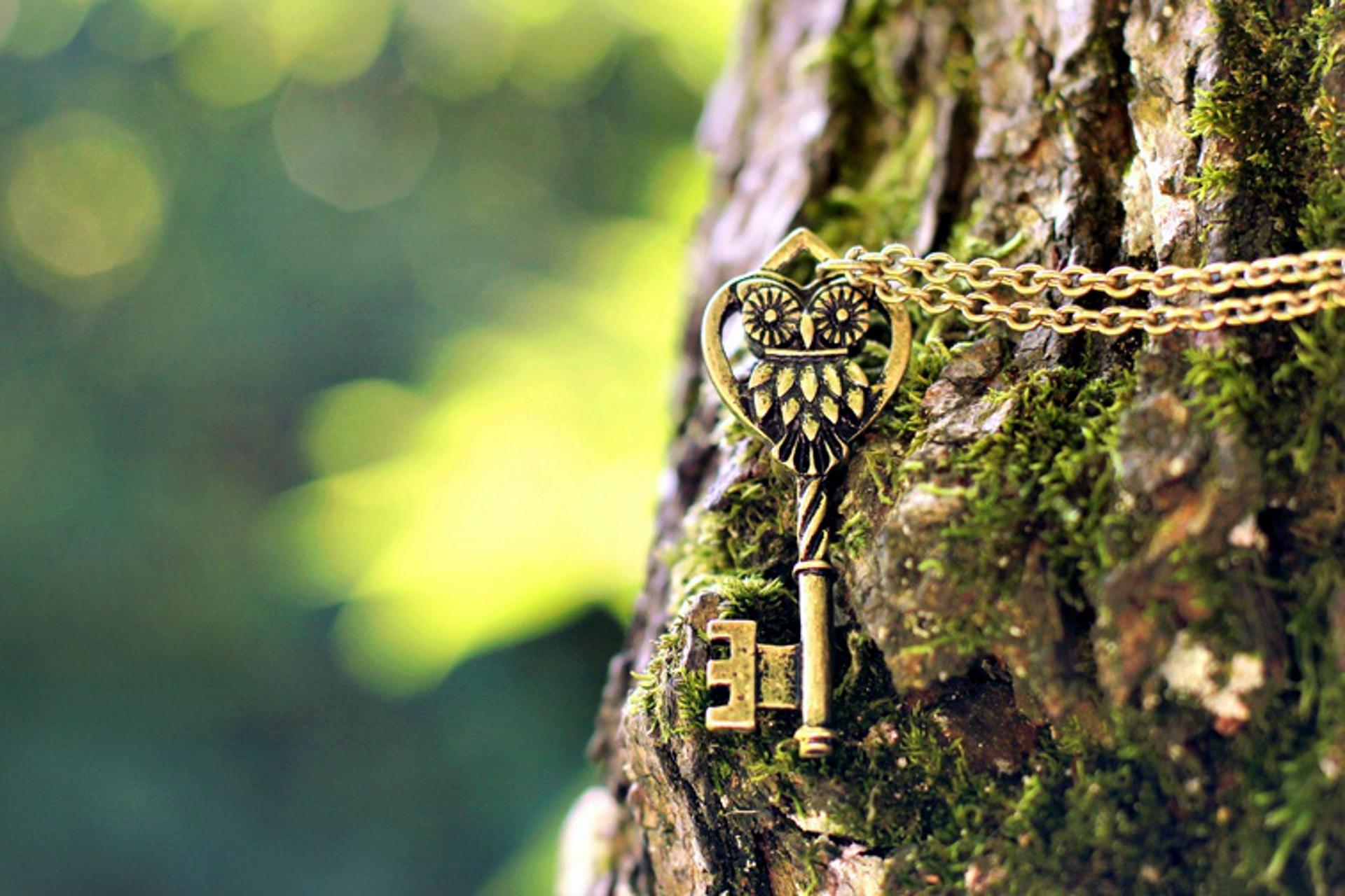 Ключ от вашей двери.